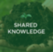 Shared  Knowledge.png