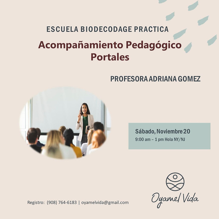 Acompanamiento pedagogico Portales