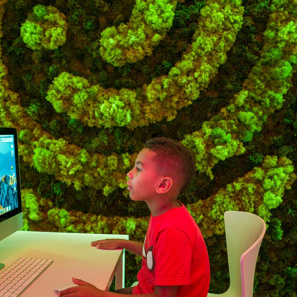 Faux Live Plant Wall for Codeverse  | Kuchar