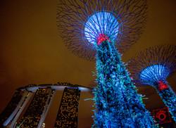 singapore-1-3