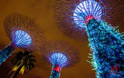 singapore-1-2