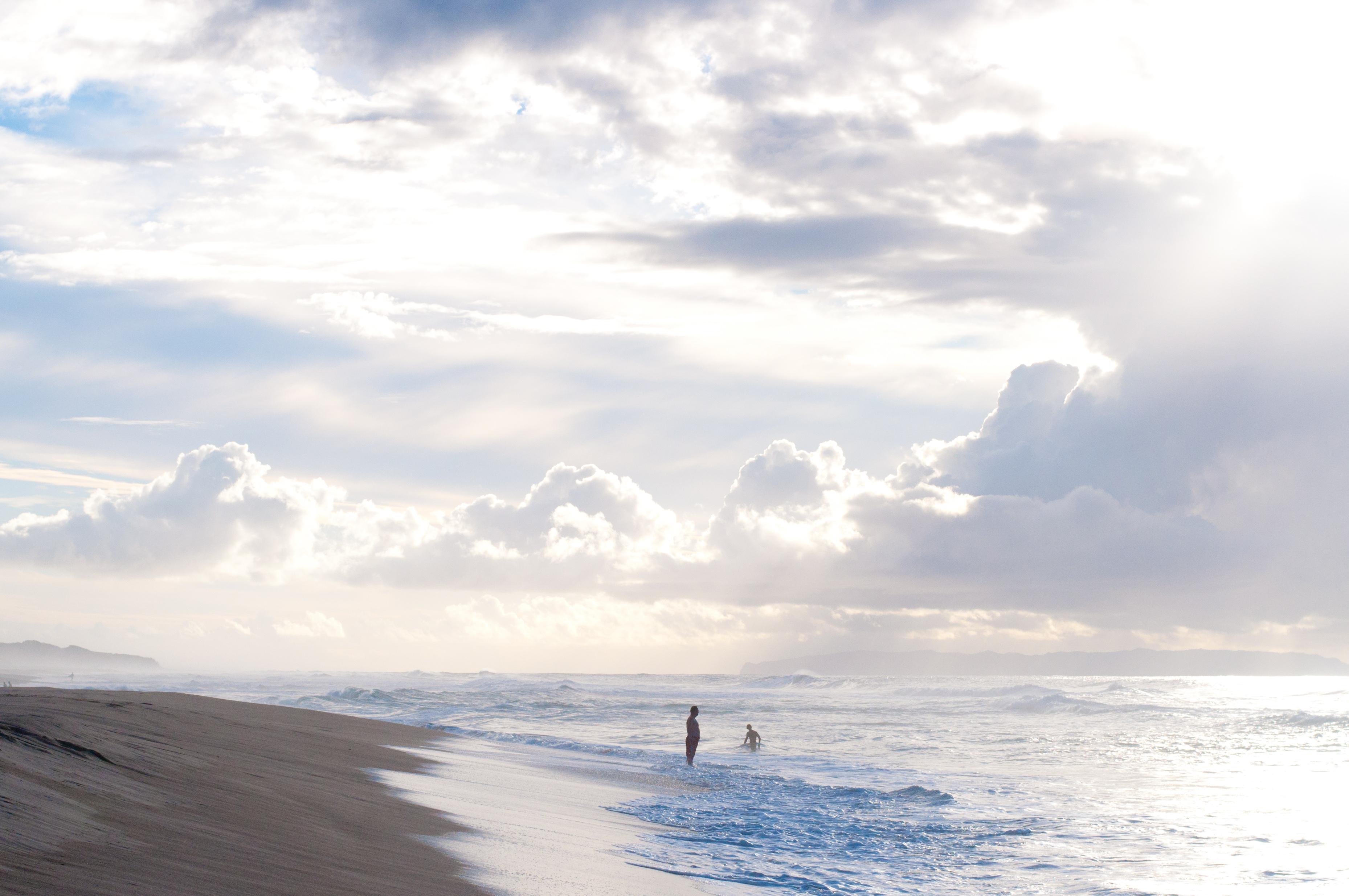Hawaii Nov-184