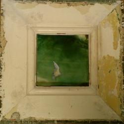 'Gull Study'