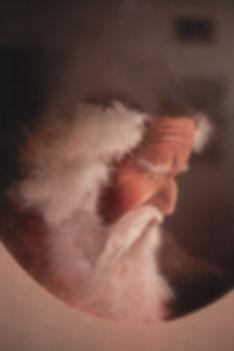 hobbit subject image.jpg