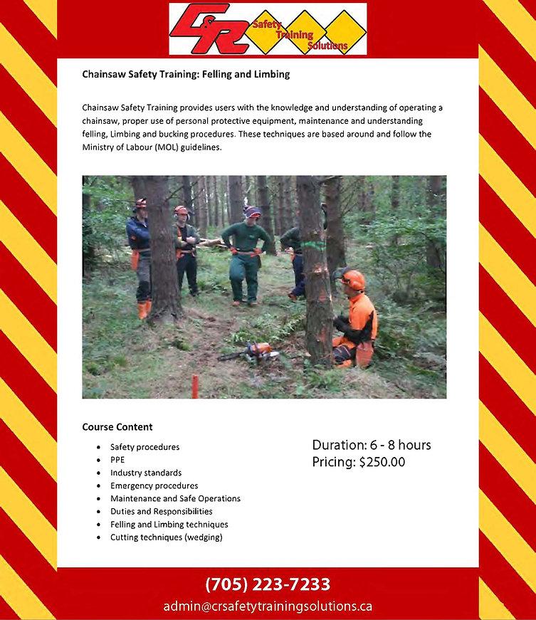 Chainsaw Safety Training Felling.jpg