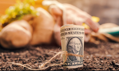 Out of the Box Ways to Make Extra Money with Your Ranch