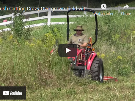 How to Easily Brush Cut a Massively Overgrown Field with Your Tractor