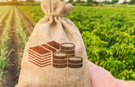 """How to Buy Farm Land Without Making These """"Little-known"""" Mistakes"""