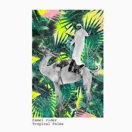 Camel rider + tropical palm