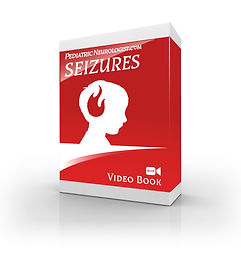 Seizures book large.jpg