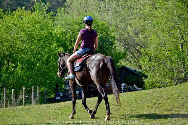 Hannah riding 2014.jpg