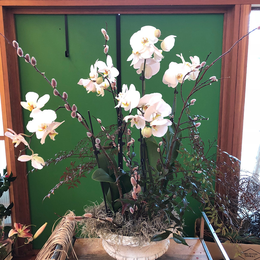 Orchid Workshop