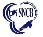 Logo bleu new.PNG