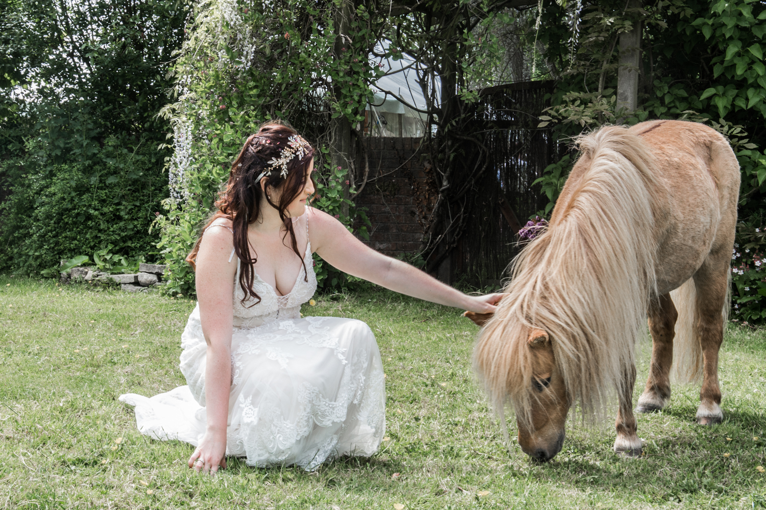 Gower Horses and Dress Wedding Photography