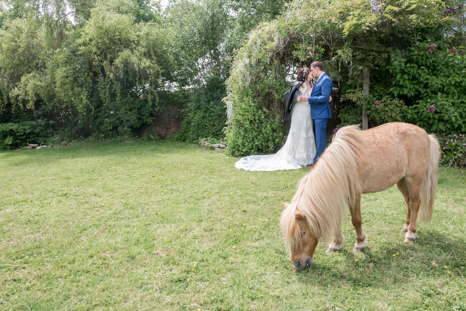 Gower Horses and Bride and Groom Wedding Photography in Swansea