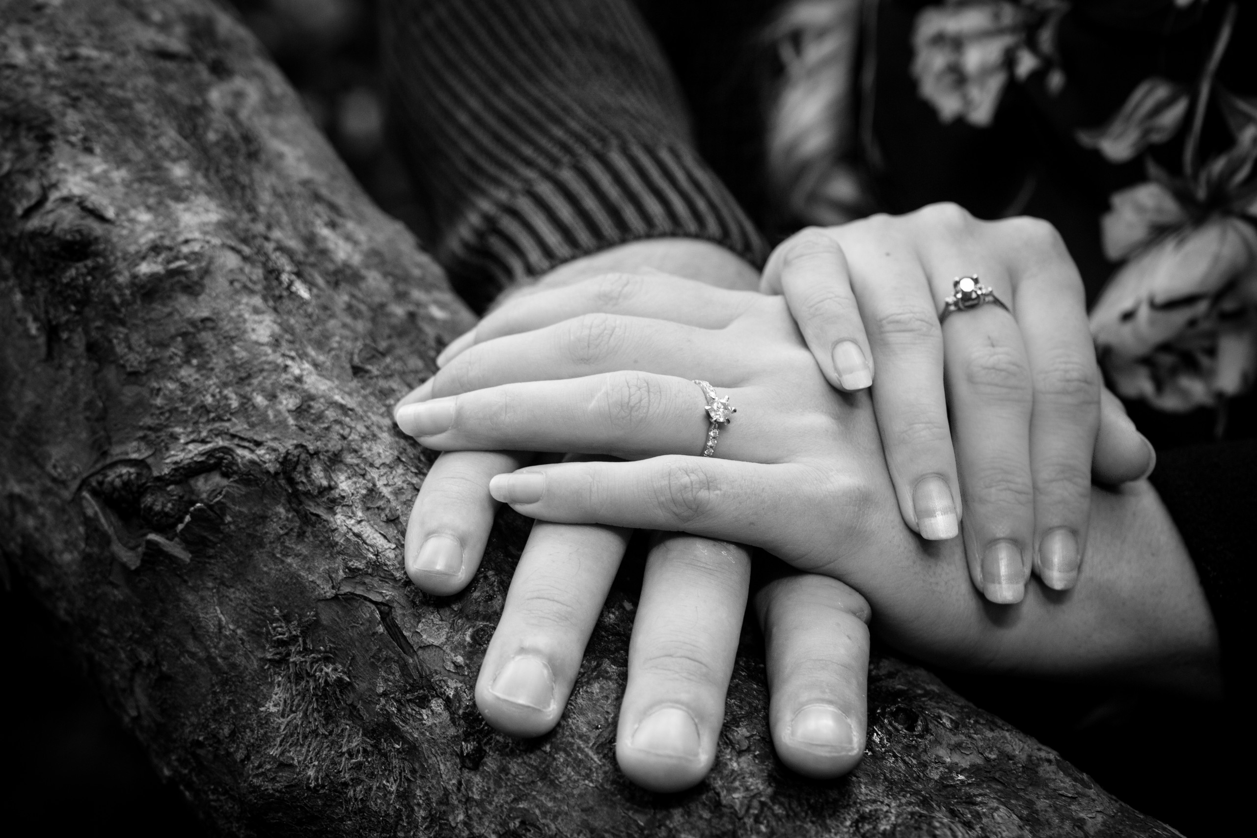 Bespoke Wedding Rings in Swansea and South Wales