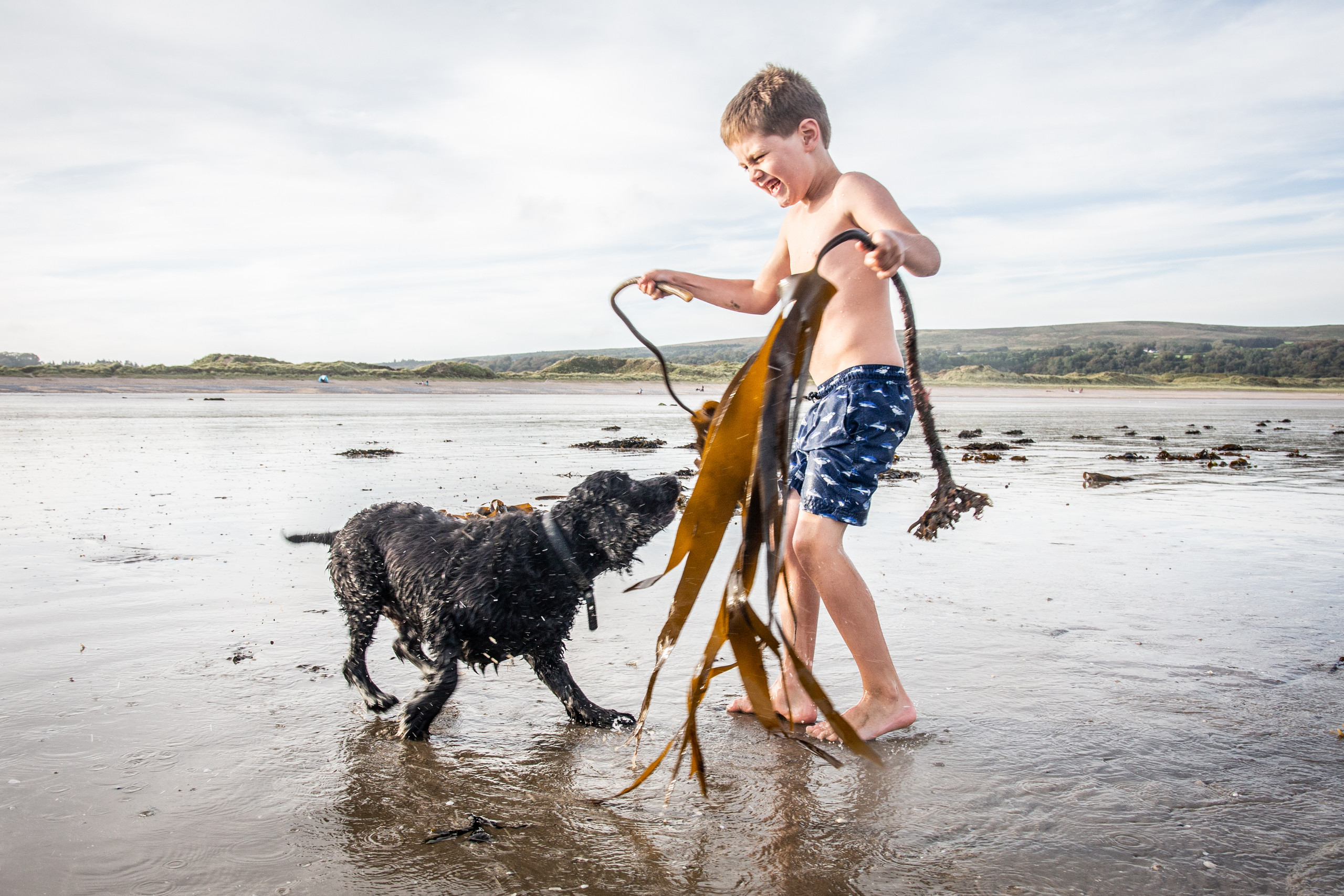 boy plays with his dog at oxwich beach during low tide