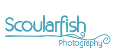 USB Logo.png