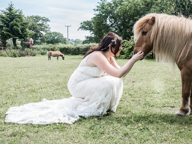 Bride and Horse Photography Gower