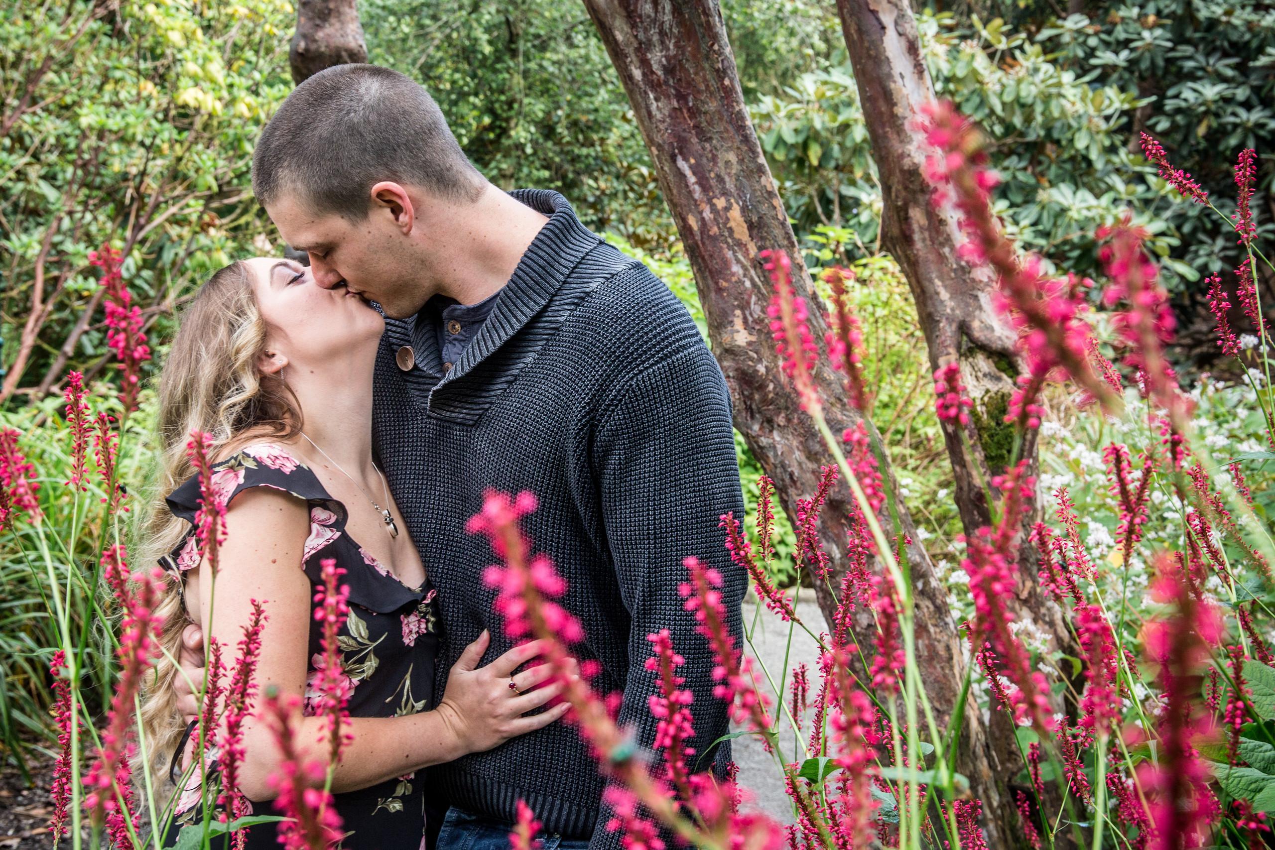 Flowers at Clyne Gardens in Swansea Wedding Photography