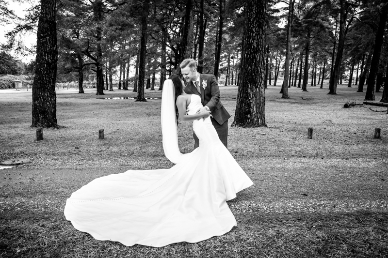 New Forest Kiss Wedding Photography in Hampshire and Southampton