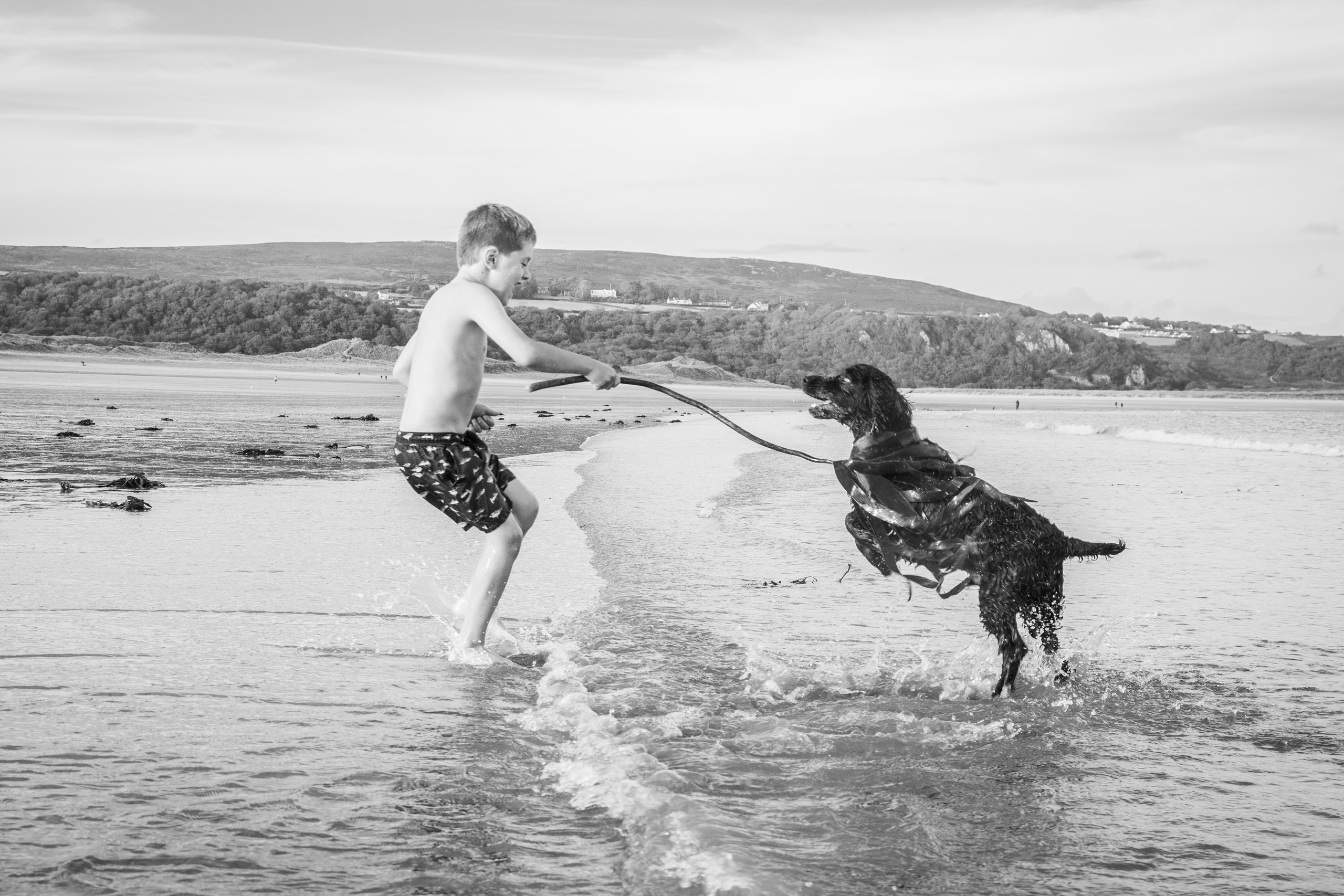 boy and his dog in the sea at Oxwich bay family photograph