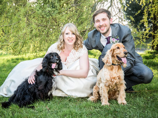 Wedding Photography with Pet Dogs