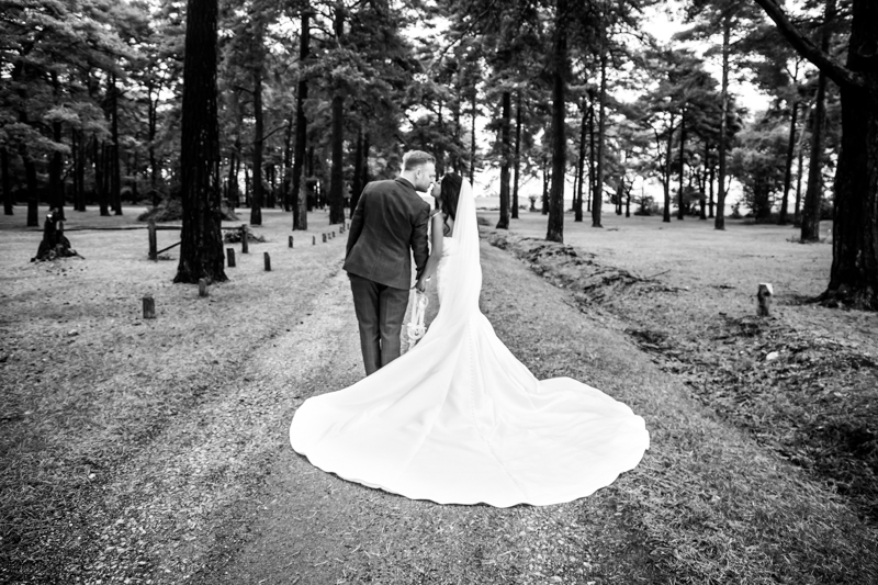 New Forest Wedding Dress Photography