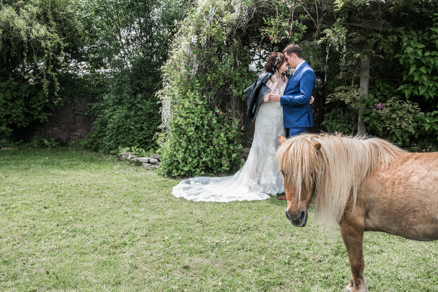 Gower Horses and Bride Wedding Photography in Swansea