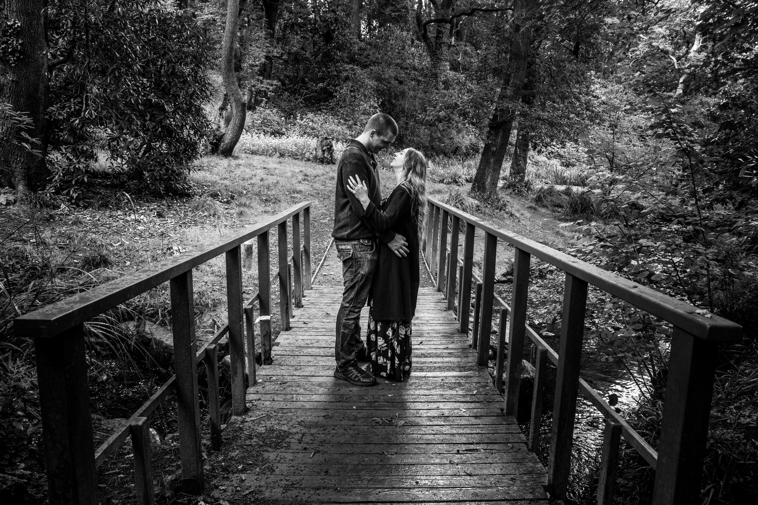 Engagement Photo at Clyne Gardens Swansea