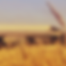 food and agricutlture sector.png