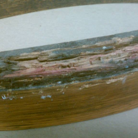 Damaged Frameback