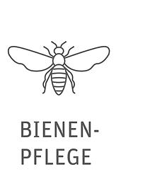 bienenpflege_Zeichenfläche 1.png