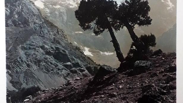 Граница леса Л. Хайкара 3/10