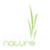 le_logo_de_l'entreprise_de_paysagiste_ca