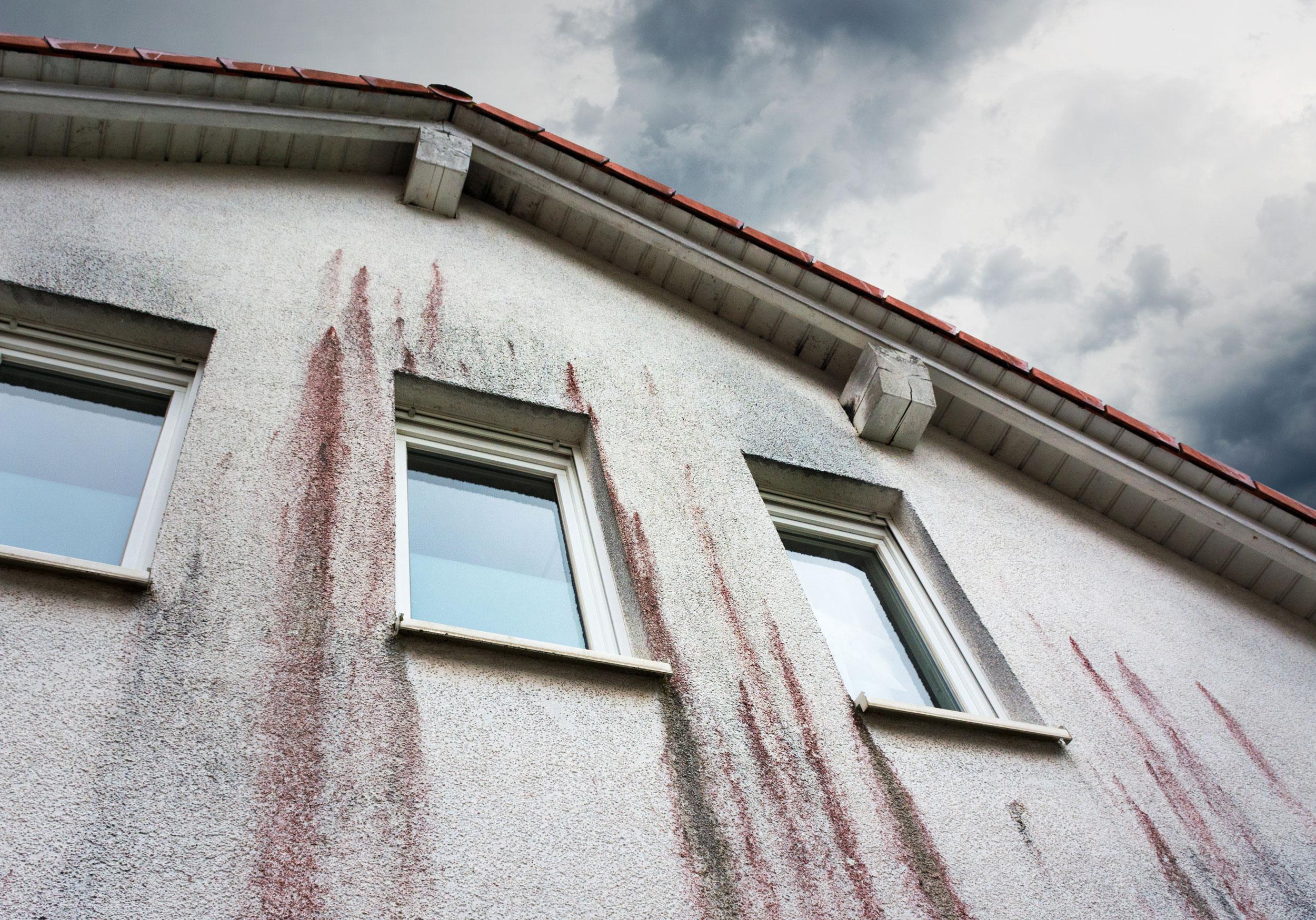 Redl Bau Fassadenreinigung