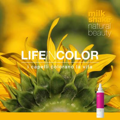 MS_lifeincolor_principi attivi2.jpg