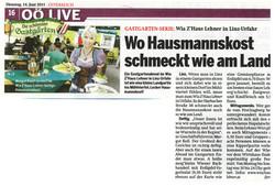 Wiazhaus_Lehner_Presse_03