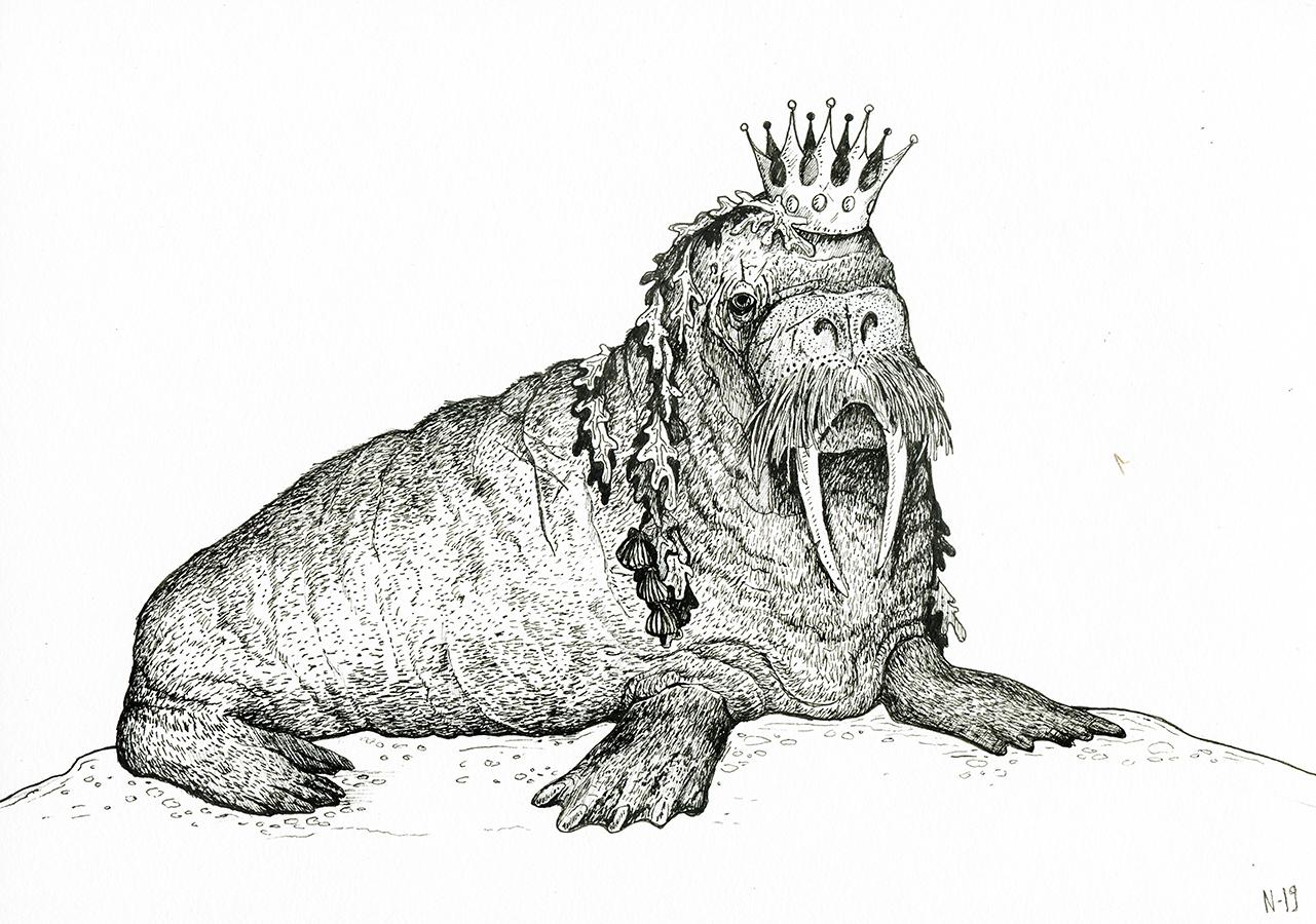 walrus_web
