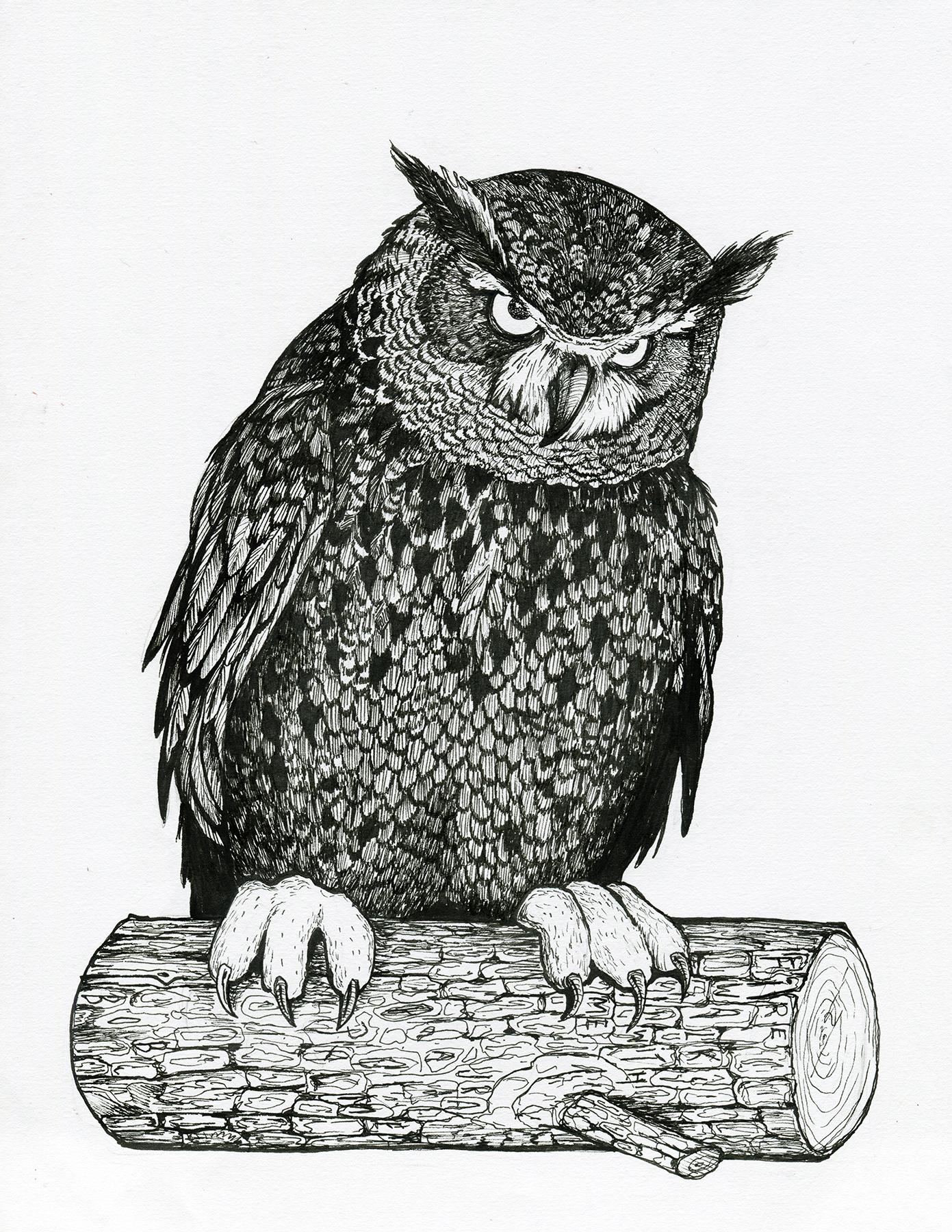 Twin_Peaks_owl_web