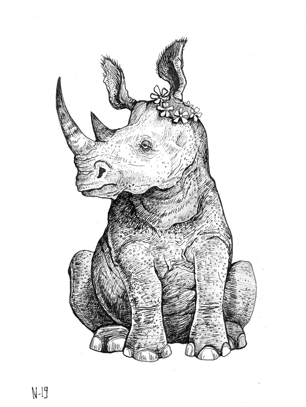 rhino_web