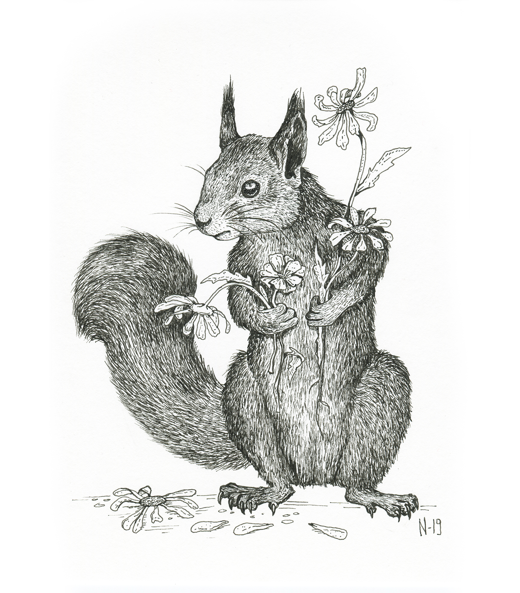 squirrel_web_2