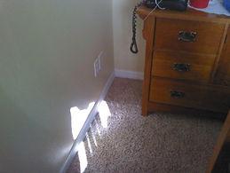 wet carpet 2.jpg