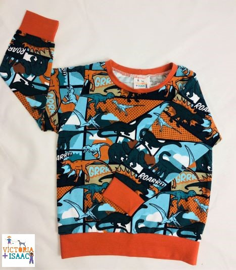 Comic Book Dinos Jumper