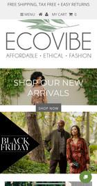 Ecovibe Website