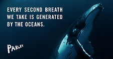 Ocean_fact-2.jpg