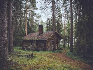 10 Adımda Doğal ve Güzel Bir Ev Sahibi Olmak