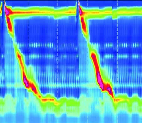 2-Figure1-1_edited.jpg