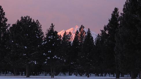 Wintery dusk