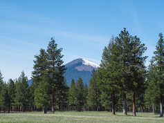 A dusting of snow on Black Butte